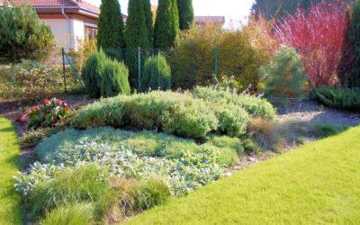 Pielęgnacja ogrodu jesienią