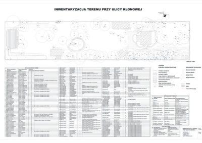 Inwentaryzacja działki leśnej do celów projektowych