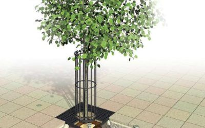 Nowoczesny system nasadzenia dużych drzew
